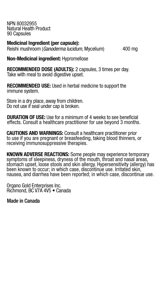 Mycelium Ingredients